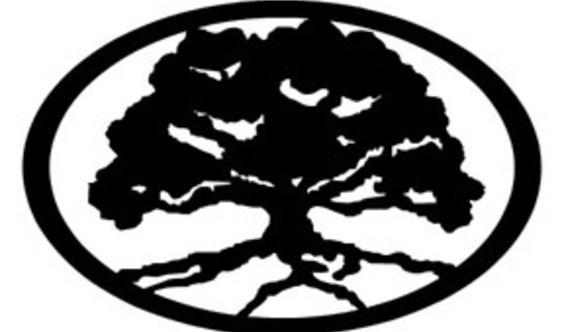 finegrain studios's Logo
